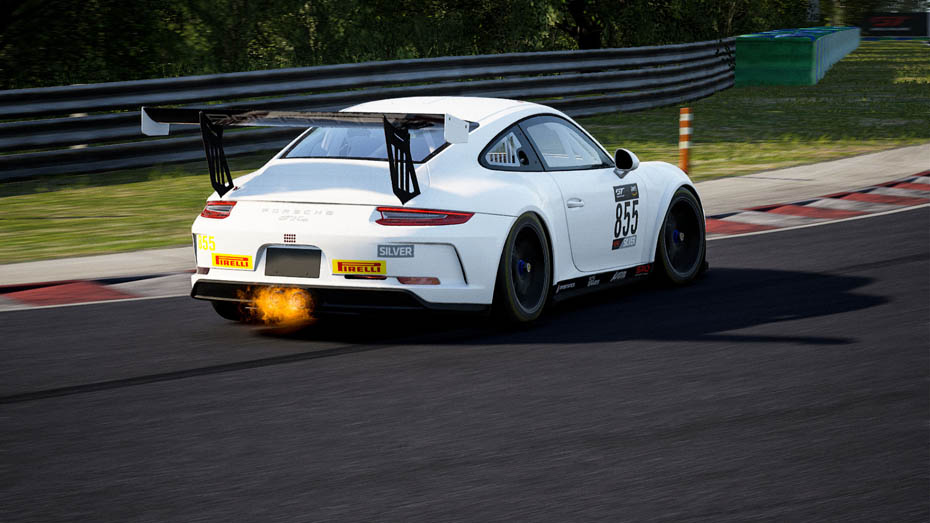 911_gt3_cup_1